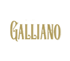 Galliano logo